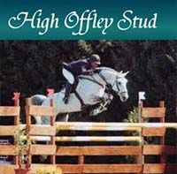 Show Jumping Stallions