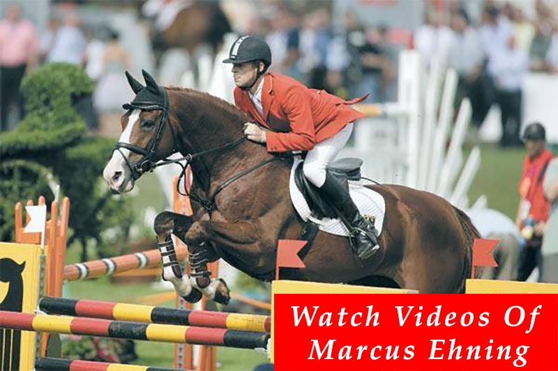marcus ehning stables