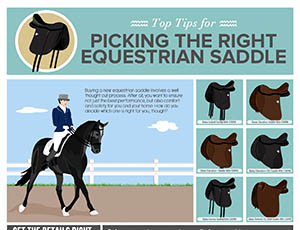Picking The Right Equestrian Saddle
