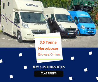 2 Horse Lorry For Sale