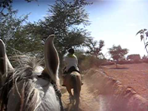 horse riding holidays trails