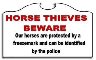 How To Protect Against Horse Thieves