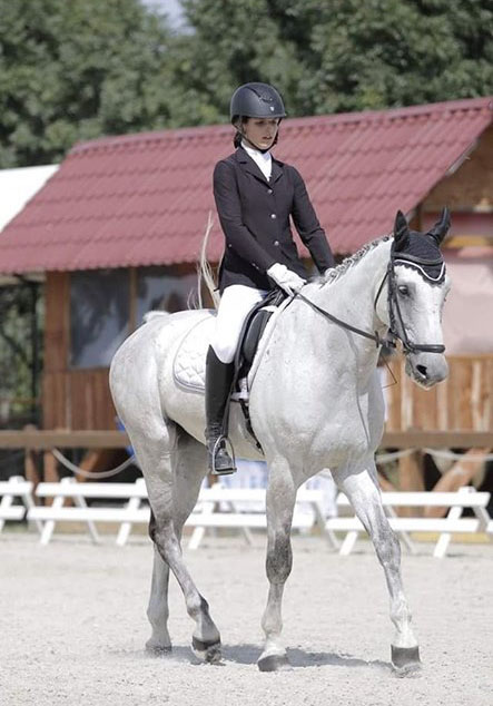 9 Years Gelding - Jumping 1.25cm (Cassuci x Athlet Z)