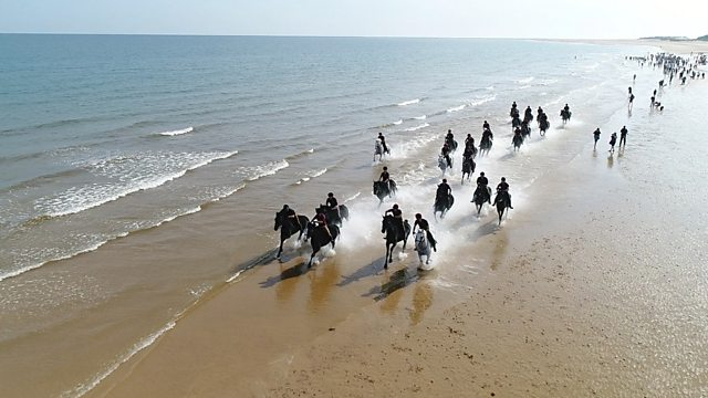 A Day At The Beach With The Household Cavalry