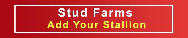 Stud Farms