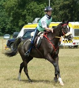 Al Nakyme - Endurance Horses