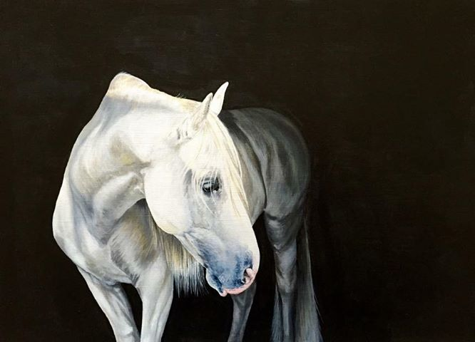 Art By Naomi Hawkins - Equine Arts