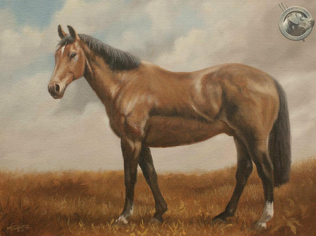 Shropshire Equestrian Artist John Silver, Horse Oil Paintings On Canvas