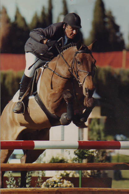 Barry Bug - Winner Of The Leading Showjumper (HOYS)