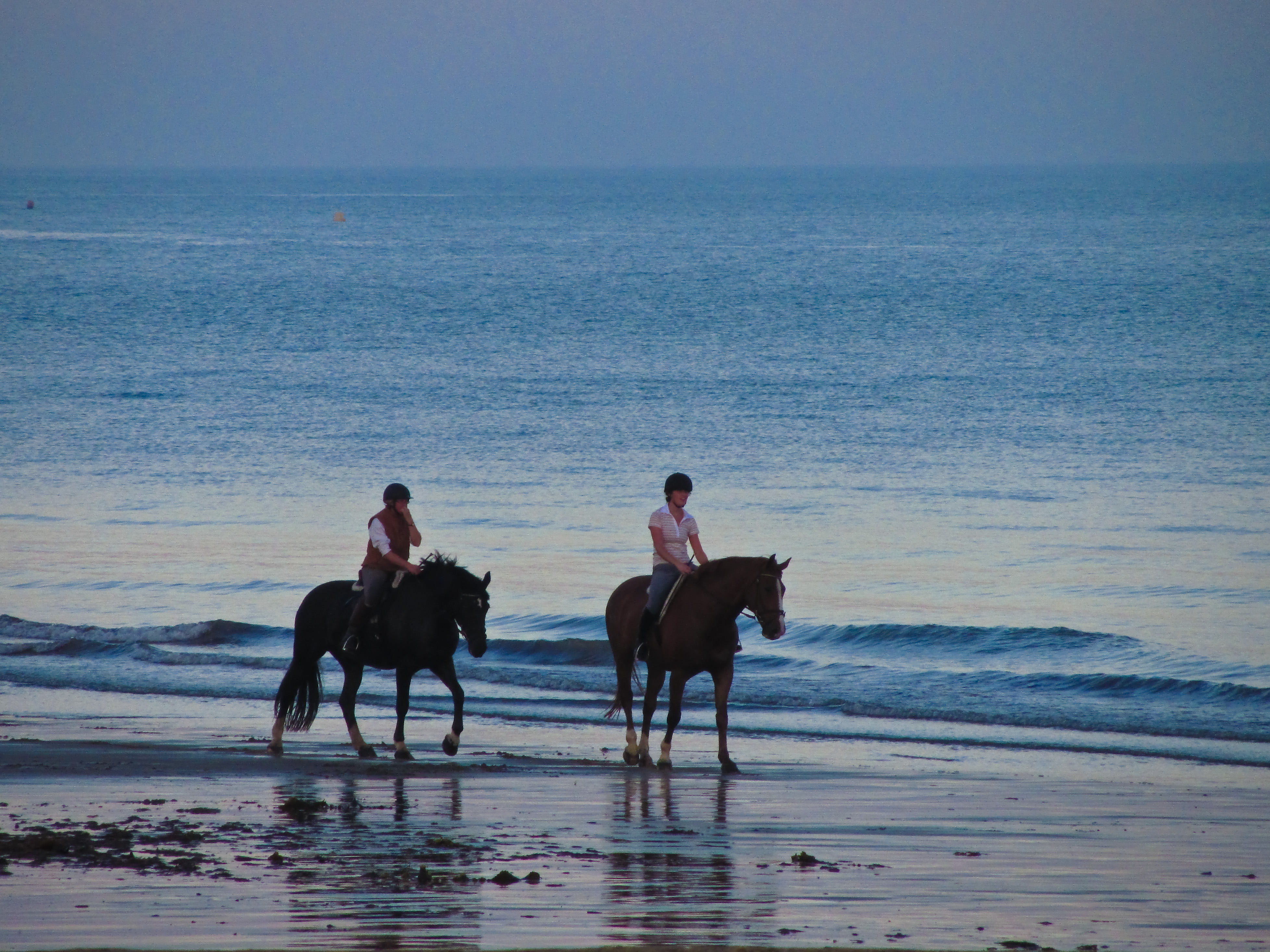 Romantic Date Ideas for Equestrians