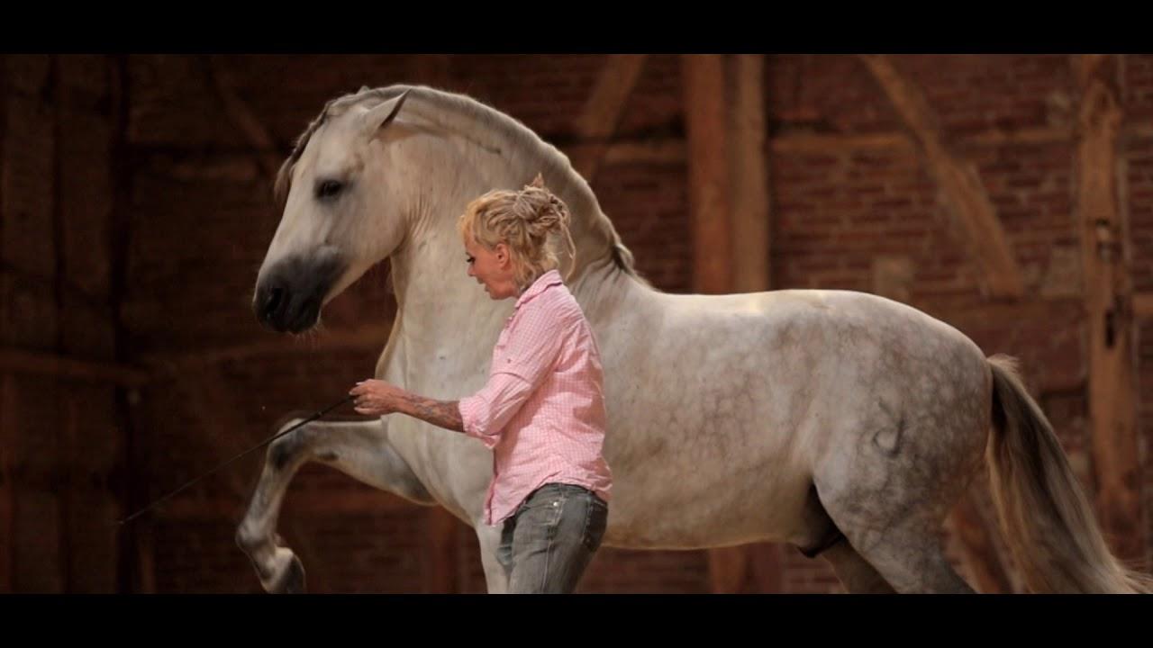 Brambilla Bachmann - Dancing With Spanish Stallions