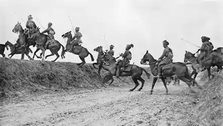 Horses Of World War One