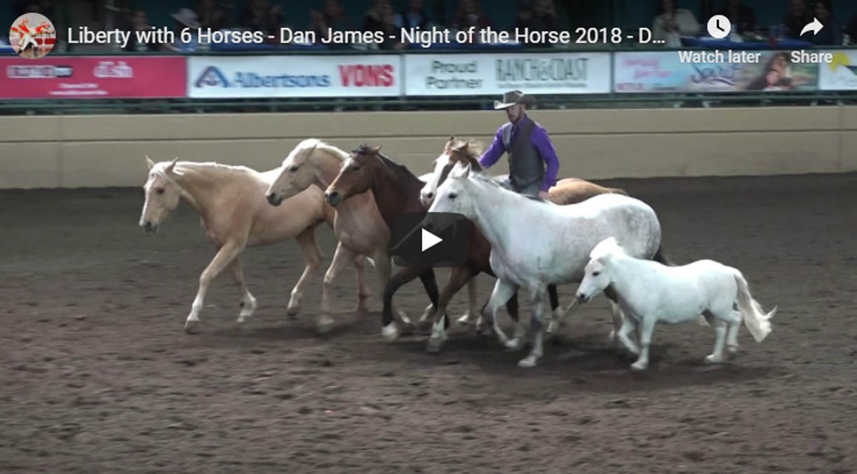 Dan James - Liberty with 6 Horses