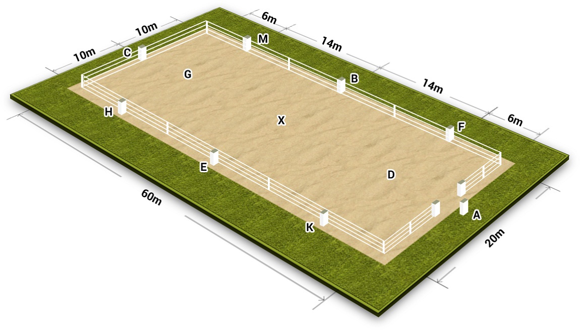 Dressage Arena Layout