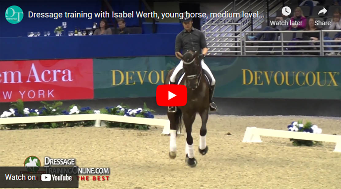 Dressage Exercises For Young Horses