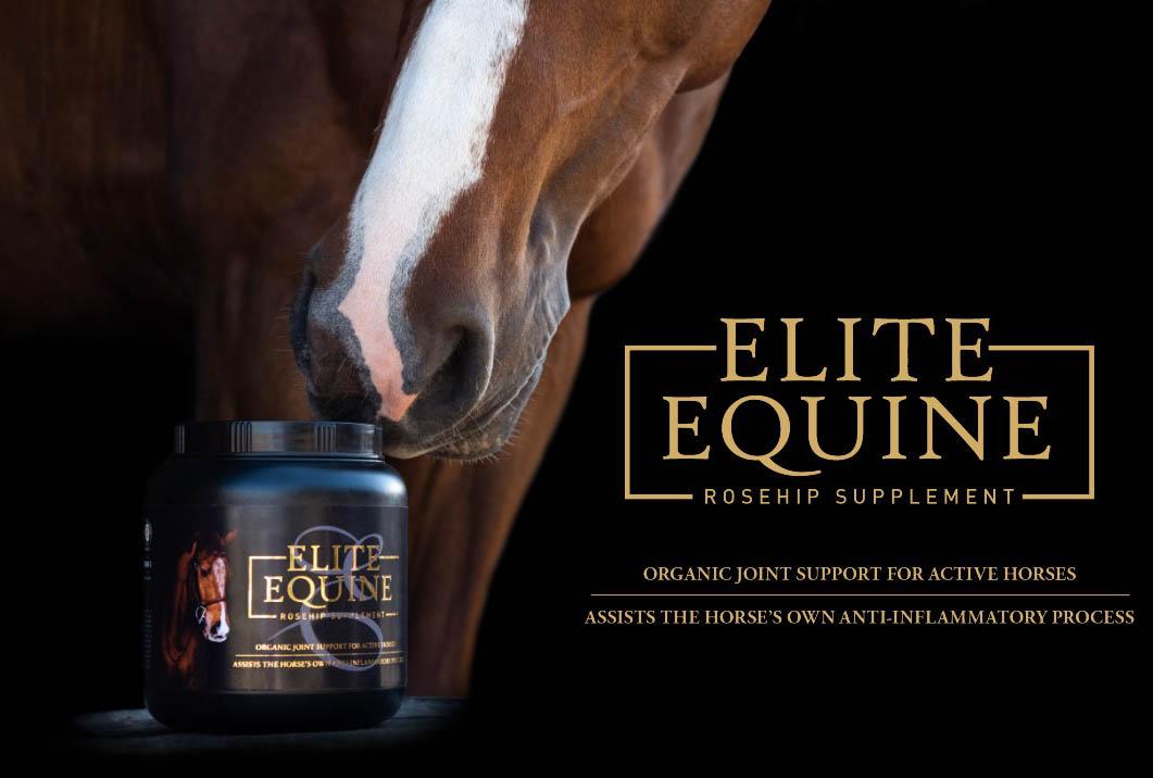 Equine Elite