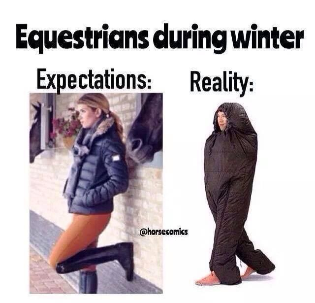 Equestrian During Winter