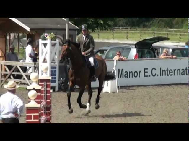 Euro Sport Horse - Homebred Foals For Sale