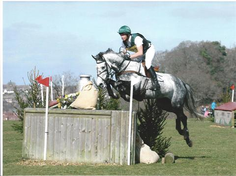 Eventing Broodmare by Master Imp