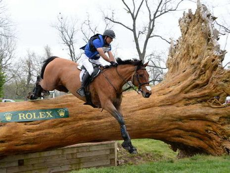 Eventing Horses
