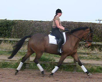 Eventing Training
