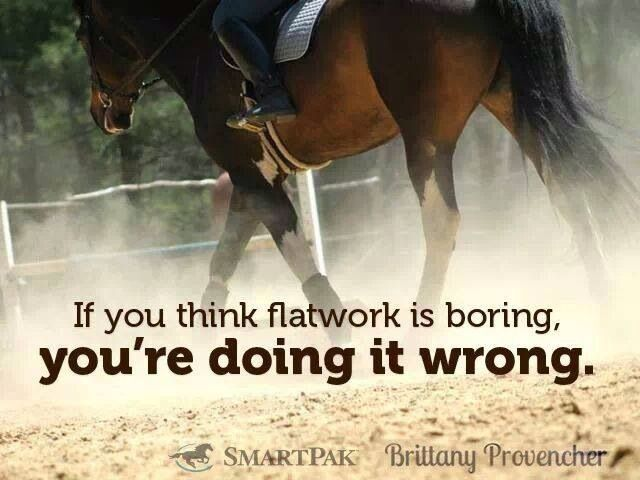 Flatwork Exercises For Horses