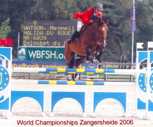 Euro Sport Horse