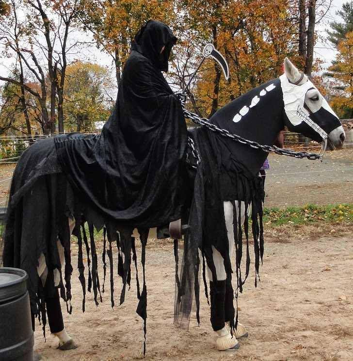 Halloween costumes for horses