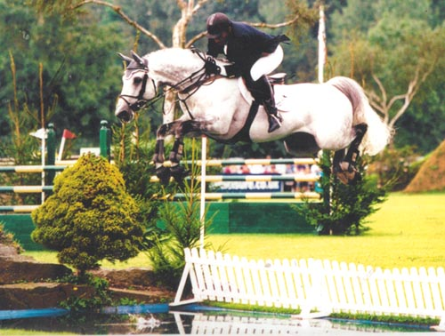 The Hickstead Derby