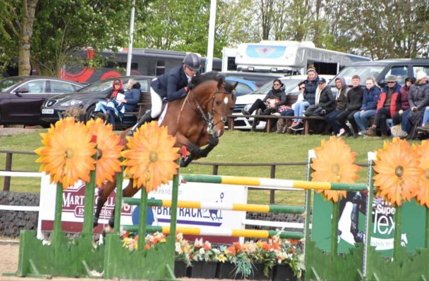 Horse Jumping For Sale