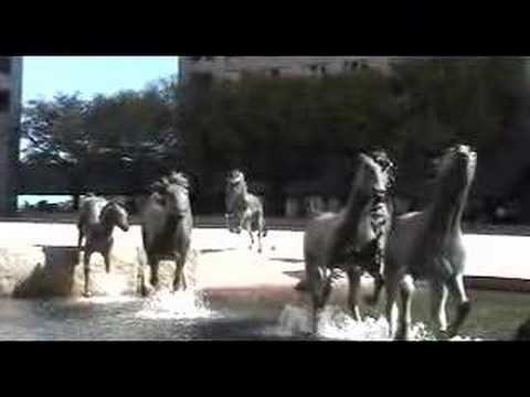 Horse Fountains
