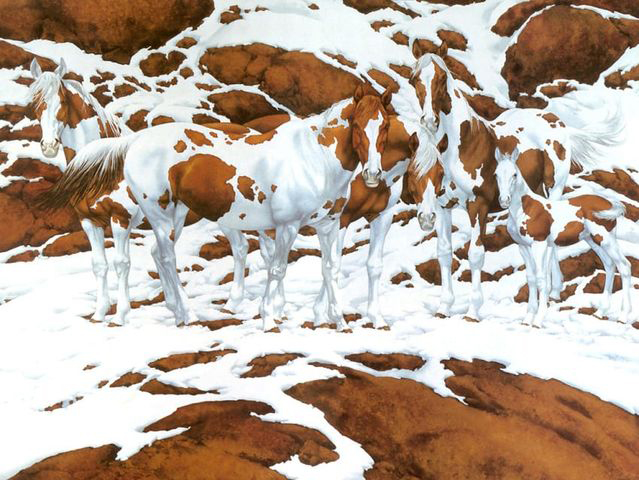 How many horses can you find in this tricky optical illusion