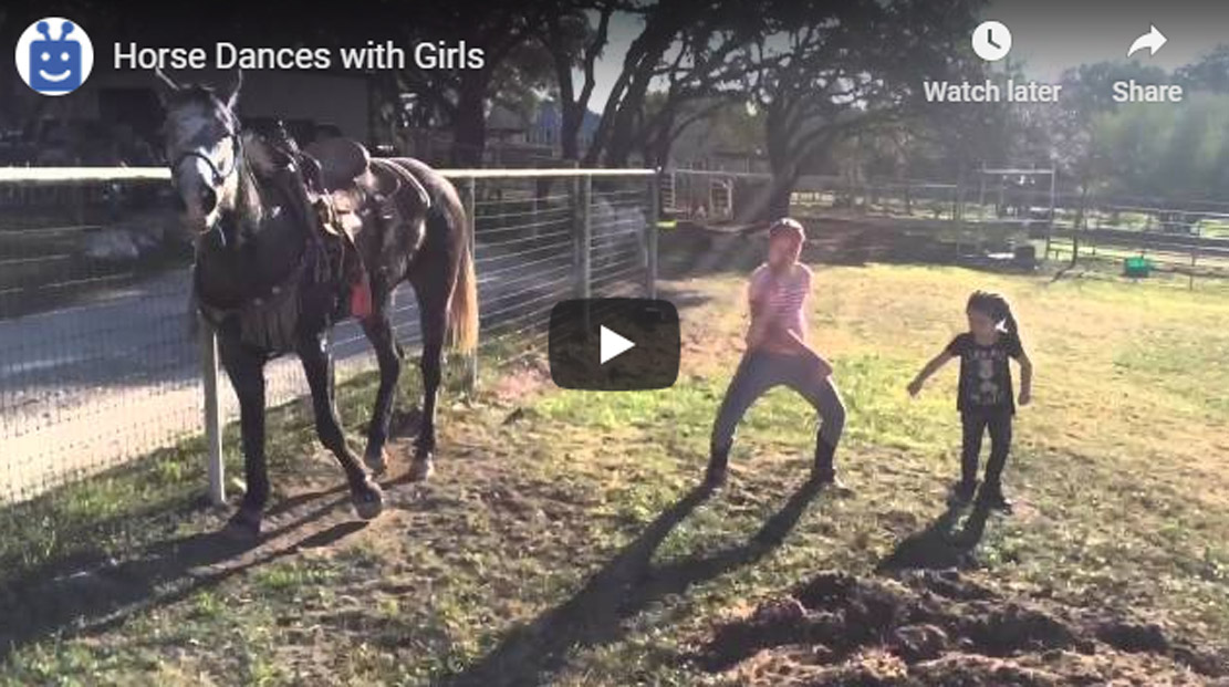 Little Girls Dancing, But The Horse Steals The Show