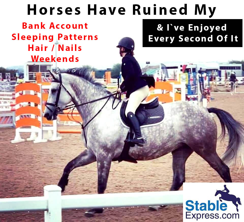 Horses Have Ruined My...