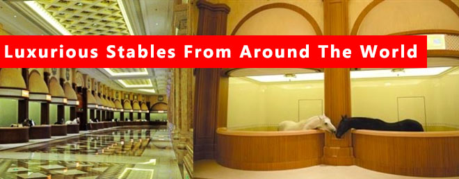 Most Interesting and Luxurious Stables In The World