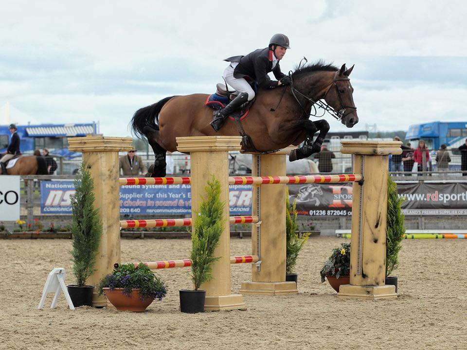 Mark Edwards Showjumping Rider