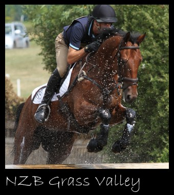Mark Todd Riding Grass Valley