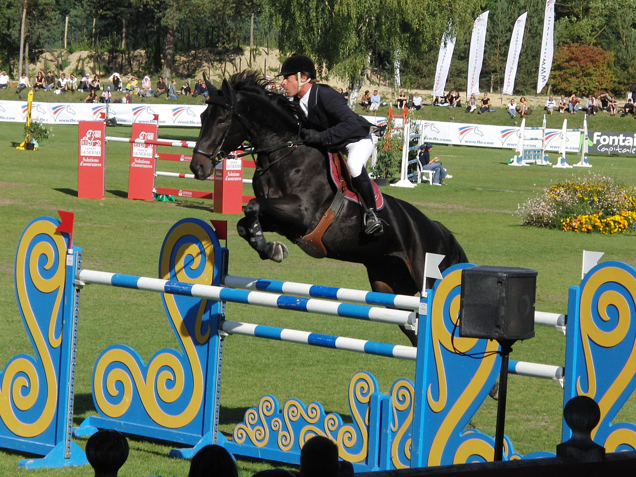 Michel Hecart French Show Jumper