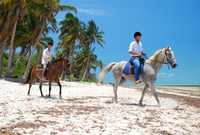 Mozambique Beach Safari - Equestrian Holidays