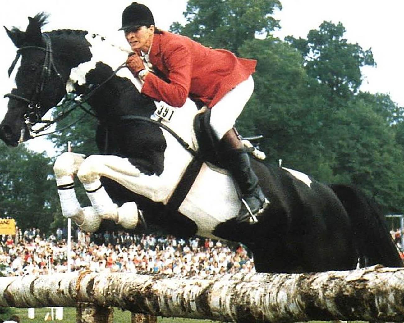 Nekoma - Coloured Sport Horse