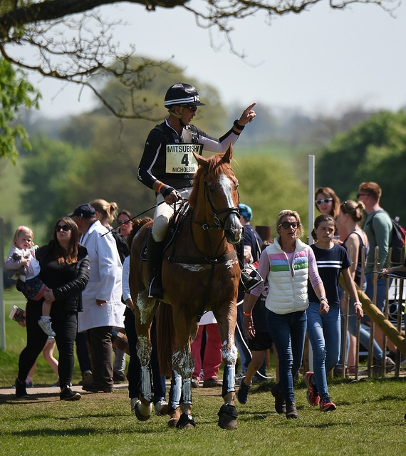 Nereo - Badminton Horse Trials