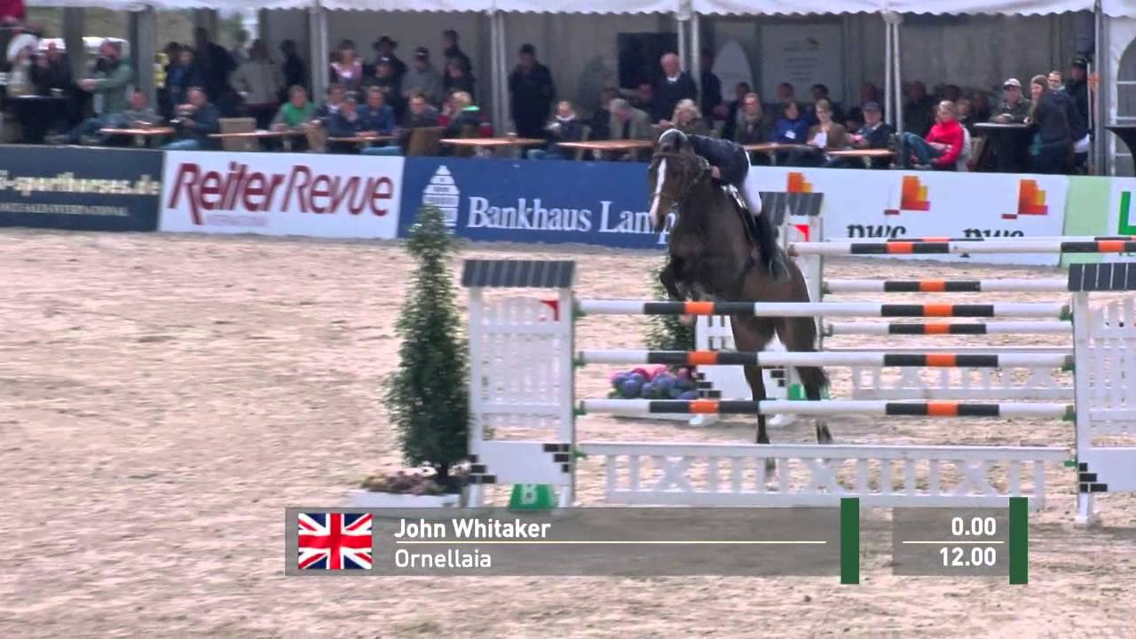 John Whitaker Get Two Exciting New Rides, Ornellaia and Cassinis Chaplin