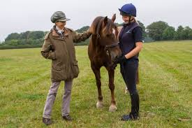 Princess Royal rehomes a pony