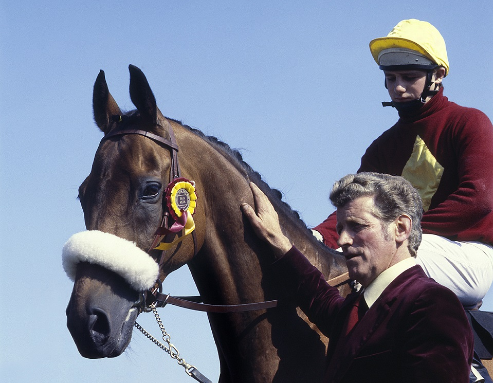 Red Rum - Race Horse