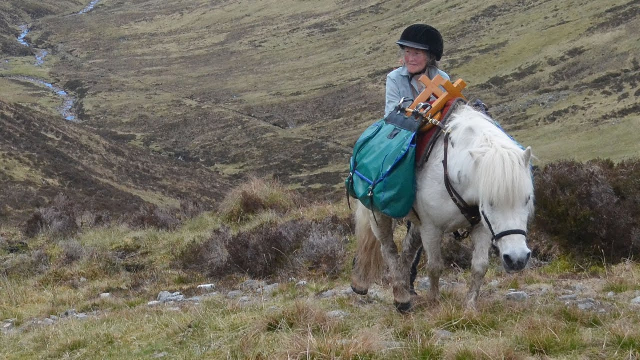 Rehomed pony explores Scottish Highlands
