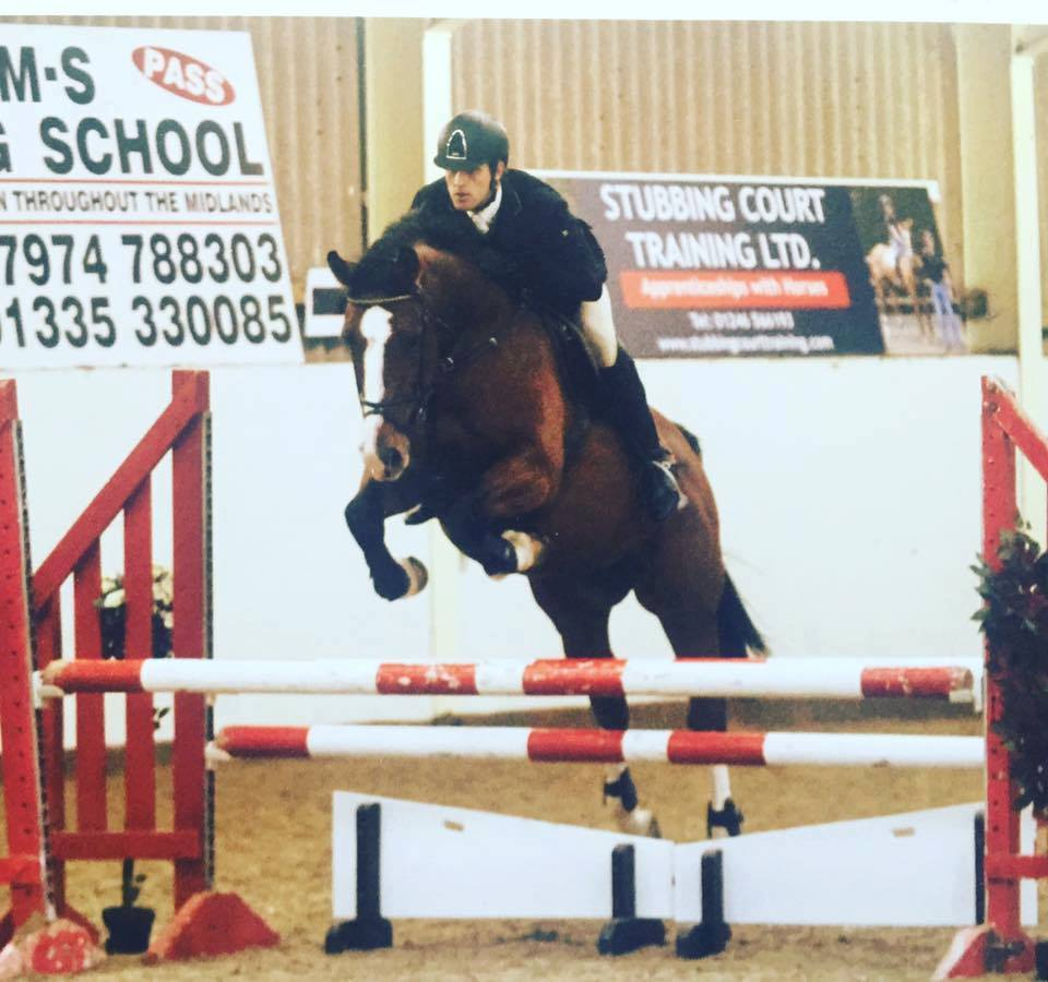 Show Jumping Horses For Sale Near Me