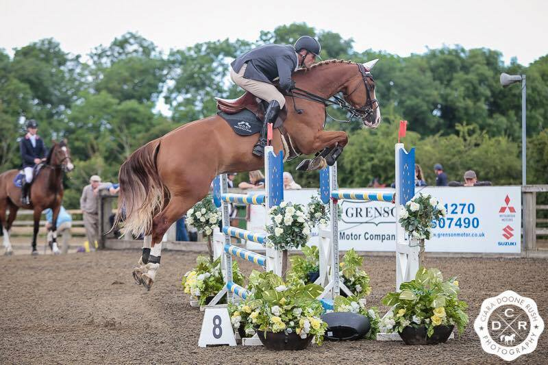 Show Jumping Horses For Sale UK
