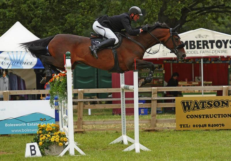 Showjumping Horse Database
