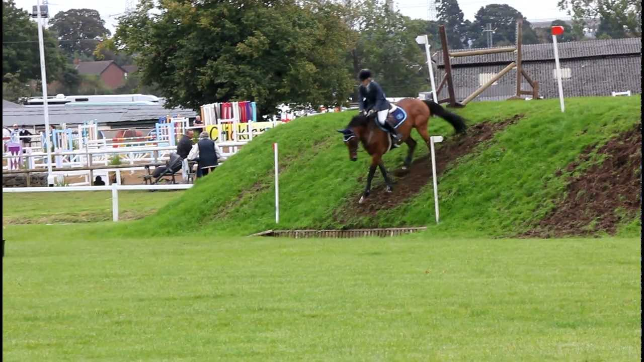 Show jumping Competitions