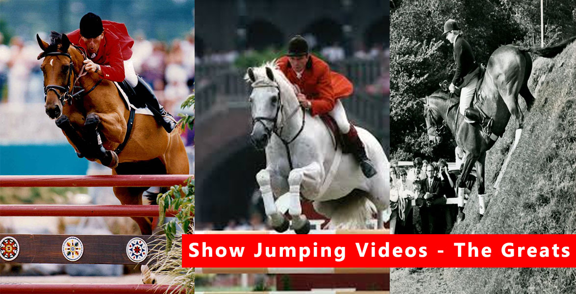 Horse Jumping Videos